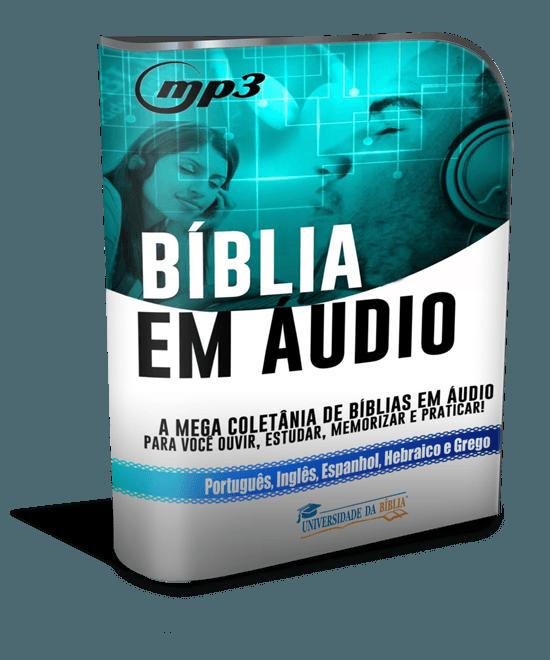 modernsoftwarebox_550x660 biblia