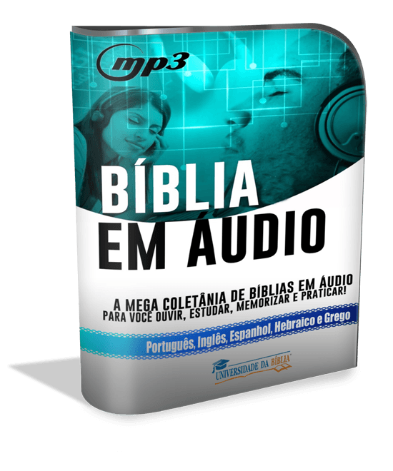 modernsoftwarebox_550x660 biblia